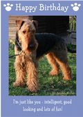 "Airedale Terrier-Happy Birthday - ""I'm Just Like You"" Theme"